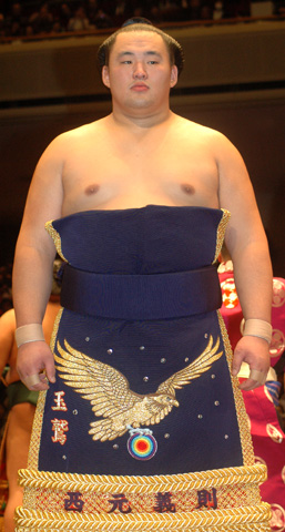 Rikishi Weight Loss - dognews